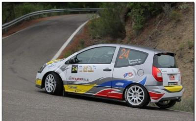 Rally Paladio 2013